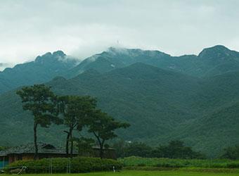 마음수련 메인센터 비 오는날 계룡산