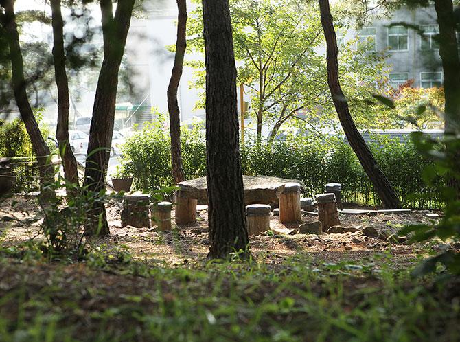 마음수련원 메인센터 소나무숲 쉼터
