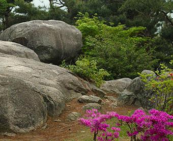 논산 마음수련원 발우바위 산책로의 바위